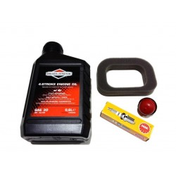 Mountfield RS100 Air Filter, Primer Bulb, Spark Plug Engine Oil Service Kit Genuine Part