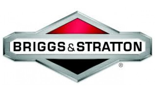 Briggs & Stratton Machines