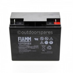 Castelgarden Batteries & Electrical