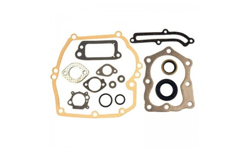 Hayter Engine Gaskets